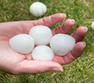 Roofing contractor specializing in hail damage